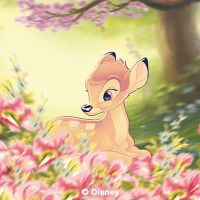 Cute Bambi  - Disney